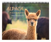 Alpaca Calendar 2018 - Animal Photography Wall Calendar