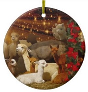 Alpaca Christmas Ornament Walnut Creek Alpacas