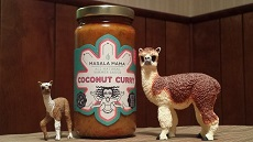 Alpaca Cooking with Coconut Curry Sauce