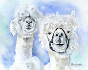 Alpacas Watercolor Painting by Susan Windsor